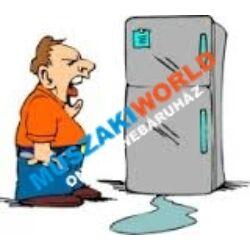 Hűtőgép szakszerű beüzemelése, javitása